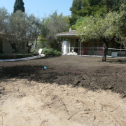 Garden Design &  Civil Management  Bottanicca-  Marbella
