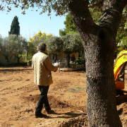 Paisajista Marbella , Direccion de obra- Jorge Barceló
