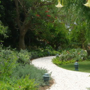 Garden design Marbella Landscape Architects