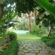 paths and walks for the garden different styles design