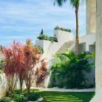 Jardin Contemporaneo, Plantacion Mediterranea Tropical, bottanicca Landscape Architects Studio, , Cristina Moreno Salamanca Paisajista, Jorge Barceló Paisajista