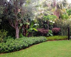 Landscape Architect- Garden Design- Urb. Marbella Sierra BlancaMarbella Sierra Blanca