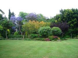 Landscape Architect- Garden Design-  La Serrranilla Nueva Andalucía Marbella